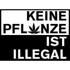 ükeine pflanze ist illegal - Keine Pflanze ist Illegal, für alle Cannabis Liebhaber oder anderer berauschender Gewächsen.