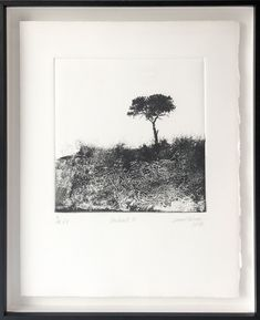 Framed Print of a tree by Laurel Holmes at StateoftheART Black And White Tree, Lone Tree, South African Artists, Framed Prints, Art Prints, Office Art, Home Art, Inspired, Artwork