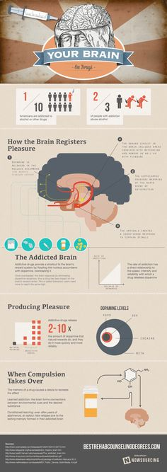 This infographic provides a deeper look into how the brain reacts to addiction and drugs.