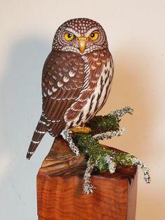 Northern Pygmy Owl - Artwork by Tim McEachern. Carved Wooden Animals, Owl Artwork, Owl Pictures, Bird Drawings, Vintage Birds, Deco, Wood Art, Amazing Art, Sculptures