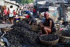 Hoping to earn a little money: A woman sells coal in the Haitian capital Port-au-Prince. Haiti