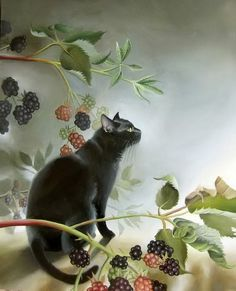 Cat amid the blackberries