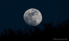 Moon in the blue. - Moon in Genoa.