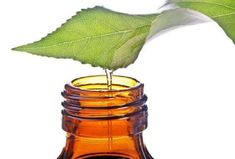 Το ριγανέλαιο και πως το χρησιμοποιούμε Clary Sage Essential Oil, Best Essential Oils, Young Living Essential Oils, Natural Treatments, Natural Cures, Natural Health, Acne Treatments, Natural Skin, Huile Tea Tree