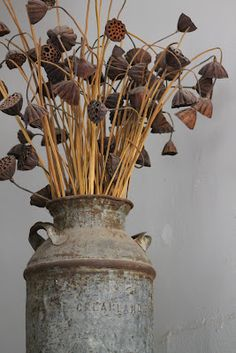 17 best lotus pod ideas images on pinterest floral arrangements dried lotus pods drieddecor mightylinksfo