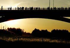 Nijmeegse Vierdaagse.  The International Four Days Marches Nijmegen.