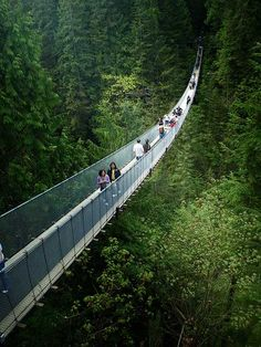 Capilano Suspension Bridge | BC