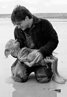 And this is where I lose it. I cry every time I watch this... from the moment I see Dobby from the back, on the beach, hunched over.
