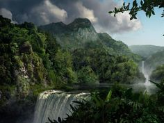 Beautiful waterfall   Rainforest
