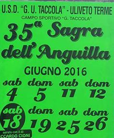2016 -  Sagra dell'anguilla - Eel Festival, June 11-12, June 18-19, and June 25-26, in Vicopisano (Pisa), Uliveto Terme, Via Simone Redini; food booths featuring local specialties open at 8 p.m; live music and dancing start at 9 p.m. http://www.sagretoscane.com/sagre/pi/vicopisano/sagra-dell-anguilla-uliveto-terme.html