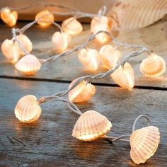 197in Shells String Lights 30 Bulbs Waterproof and Eco-friendly LED Lights Lighting is one of the most important elements to create ambiance in a room. These shell LED string lights can be used in indoor or outdoor decorations. It is a good idea to decorate curtain with this sparkling lights. This light can create unique styles that reflect special moods, espectially on festivals.