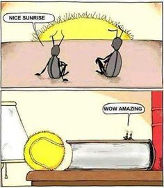 All about perspectives...