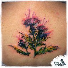 #thistle #scotchthistle #watercolortattoo #watercolourtattoo #watercolor #watercolour #tattoo #ewasroka #lodz #poland #colortattoo #flowertattoo #tatuaż
