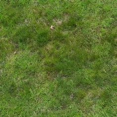 Nomeradona SketchUp VR: Tutorial: Grass and Rock Displacement in Vray SketchUp