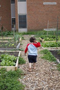 raised beds in kids vegetable garden by christine chitnis via Gardenista