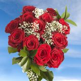 GlobalRose 6 Dozen Fresh Cut Red Roses for Mothers Day Long Stem - Fresh Flowers Express Delivery for Mother's Day 100 Red Roses, Dozen Red Roses, White Roses, Pink Roses, All Flowers, Fresh Flowers, Wedding Flowers, Wedding Bouquets, Mothers Day Roses