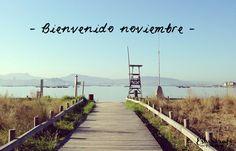 Bienvenido noviembre | Esturirafi