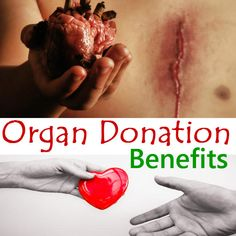 Benefits of Organ Donation to Save Lives : Organ donation is an art of Transferring the Organs to others.