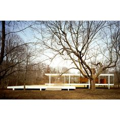 Farnsworth House   Plano, Illinois   Mies van der Rohe   photo © Jon Miller /Hedrich Blessing Illinois, Jon Miller, Farnsworth House, Green Building, That Way, Blessing, Modern Architecture, Muse, Buildings