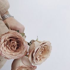 Life-Changing Wisdom That Will Put Time in Perspective (Darling Magazine) Neutral Wedding Flowers, Rose Wedding, Floral Wedding, Wedding Shoot, Rose Varieties, Flower Names, Coffee Colour, Spray Roses, Antique Roses