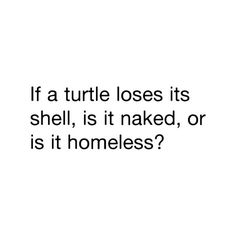 Turtle Quote (: By:: Sydney! USE! ♥ ❤ liked on Polyvore featuring quotes, words, text, sayings, funny, backgrounds, phrases e saying