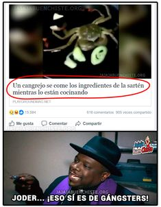 Funny Images, Funny Pictures, Mexican Memes, Pinterest Memes, Spanish Memes, Funny Tweets, Best Memes, I Laughed, Haha