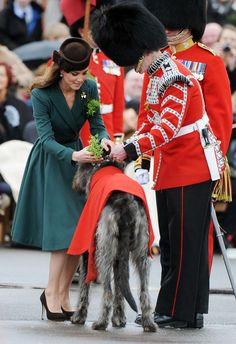 The Duchess of Cambridge shamrocks to The Irish Guards' mascot, Irish Wolfhound, Conmael, at their St. Patrick's Day Parade