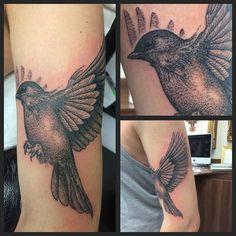 Dot work bird by Joanne #devilsowntattoo #devilsown #leicester #leicestertattoo #blackandgreytattoo#dotworktattoo #birdtattoo #tattoo #femaletattoo