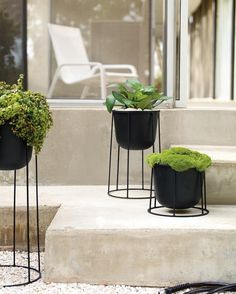 Show off your #greenthumb – new Wire Planters by @NormArchitects. #planters #normarchitects #dwr #design