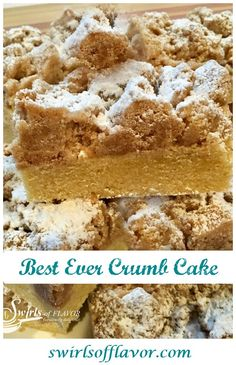 Every bite of the Best Ever Crumb Cake is heavenly when a rich vanilla-scented cake is topped with buttery cinnamon crumbs kissed with powdered sugar! Homemade Desserts, Easy Desserts, Delicious Desserts, Yummy Food, Christmas Desserts, Christmas Baking, Christmas Recipes, Holiday Recipes, Easter Recipes