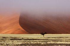 11 gute Gründe, warum Sie unbedingt nach Namibia reisen müssen