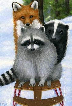Raccoon Skunk and Fox - goede getekende voorbeelden Animals And Pets, Funny Animals, Cute Animals, Baby Animals, Raccoon Art, Fox Art, Especie Animal, Mundo Animal, Raccoon Illustration