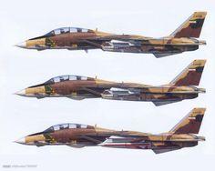 Iranian F-14 Tomcat