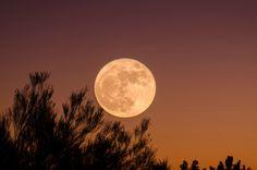 3-31-full-moon-manifest-hasta-vedic-astrology