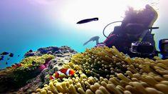 Sabang Island good spot for diving www.acehtravelguide.com