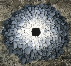 Le Land Art magique de Andy Goldsworthy (13)