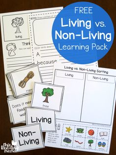 Before diving into a plants unit or animals unit, I think it's good to spend a little time exploring living vs. non-living. This helps learners have a clear understanding of how living things work. And that's exactly what this free living vs non-living le Science Montessori, Preschool Science, Science Classroom, Teaching Science, Science Activities, Science Topics, Science Fun, Student Teaching, Life Science