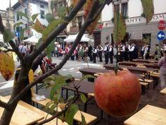 Friuli #Venezia #Giulia: #Festa della Mela 2016 il frutto proibito star di Tolmezzo (link: http://ift.tt/2cCkvCk )