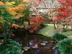 New Elemente Japanischer Garten Wasser Steinbr cke