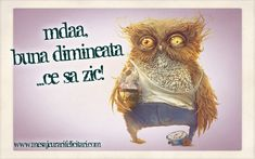 Happy Good Morning Quotes, Wise Words, Funny Pictures, Owl, Bird, Humor, Desktop, Motivation, Projects