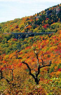 Best HD Blue Ridge Parkway Wallpapers