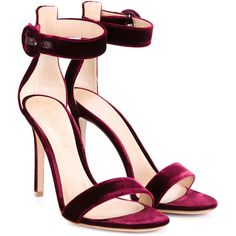Gianvito Rossi Portofino Velvet Sandals ($615) ❤ liked on Polyvore featuring shoes, sandals, heels, burgundy sandals, burgundy velvet shoes, round toe shoes, ankle wrap shoes and ankle wrap sandals