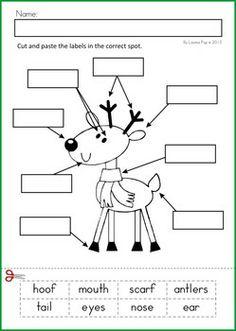 kindergarten literacy