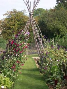Sweet Pea TeePee ... need it!  that would smell GREAT!