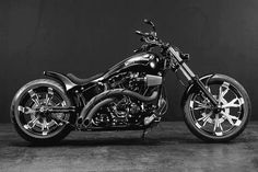 Harley Twin Cam Softail
