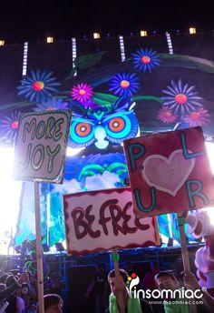 EDC Las Vegas 2013 Day 3 - Photo By: Curious Josh