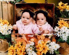 Too cute :) Granddaughters, Twin, Cute, Model, Home Decor, Kawaii, Interior Design, Home Interior Design, Twins