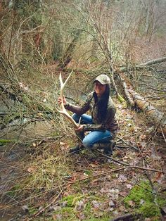 Elk shed   Shed hunting Idaho