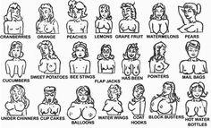 Type of Boobs