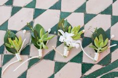 Succulents groom and groomsmen boutonniere for Lance and Lisa´s wedding in Cabo del Sol Designed by Elena Damy! Photo by Ana & Jerome Photography!